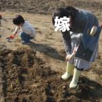 02tagayasu
