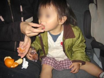 20091115_13_mikan-360x270