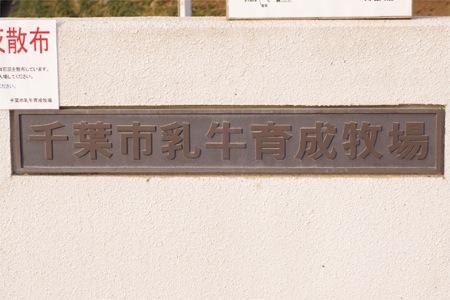 20110129-001.jpg