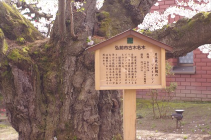 2011hirosaki05.JPG