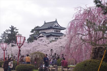 2011hirosaki10.JPG
